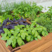 Cestini in legno per il vostro orto in terrazza